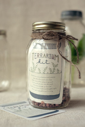 DIY_Gift_Terrarium_Kit1
