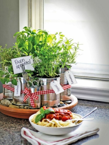 Tin-Can-Herb-Planter-for-the-Kitchen